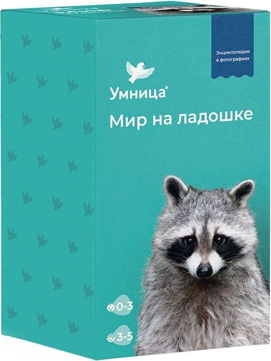 Енот Мир на ладошке Энциклопедия в фотографиях Умница