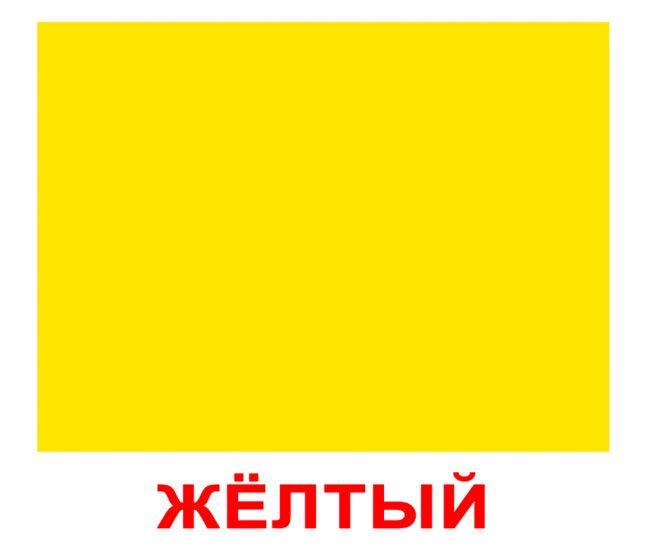 Форма и цвет Вундеркинд с пеленок обучающие карточки для детей 165х195 мм 20 шт.